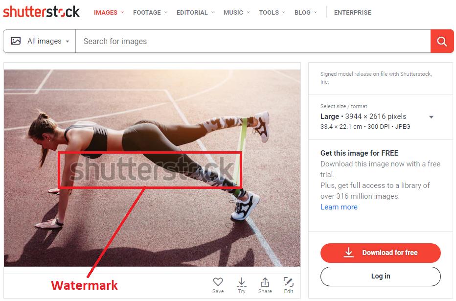 Shutterstock scraping
